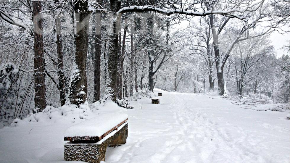 Бяла приказка в Скобелев парк