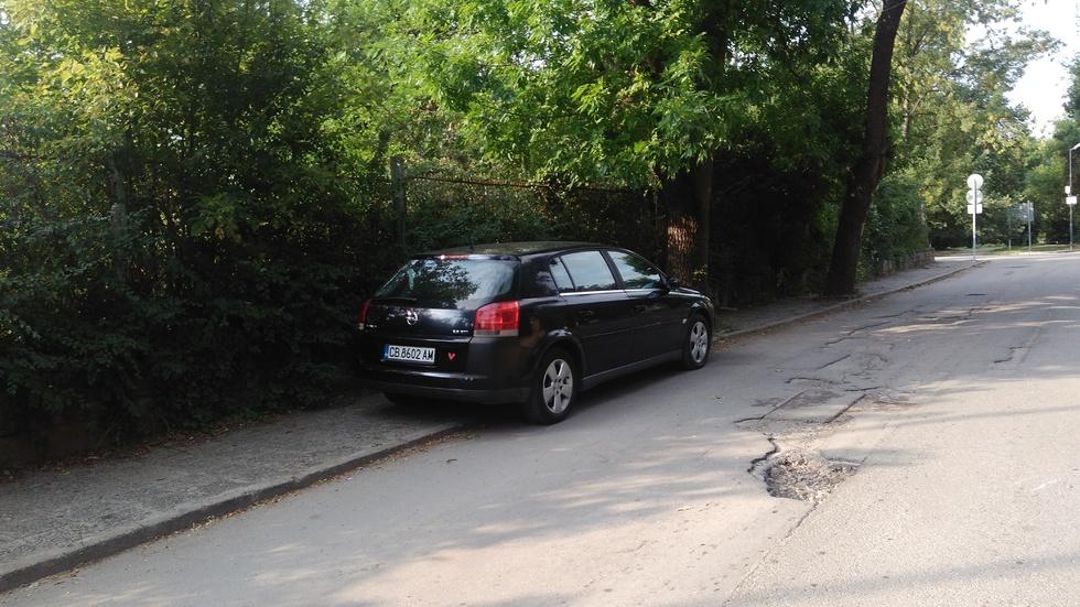Паркиране в Борисова градина