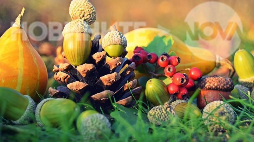 Есенно настроение