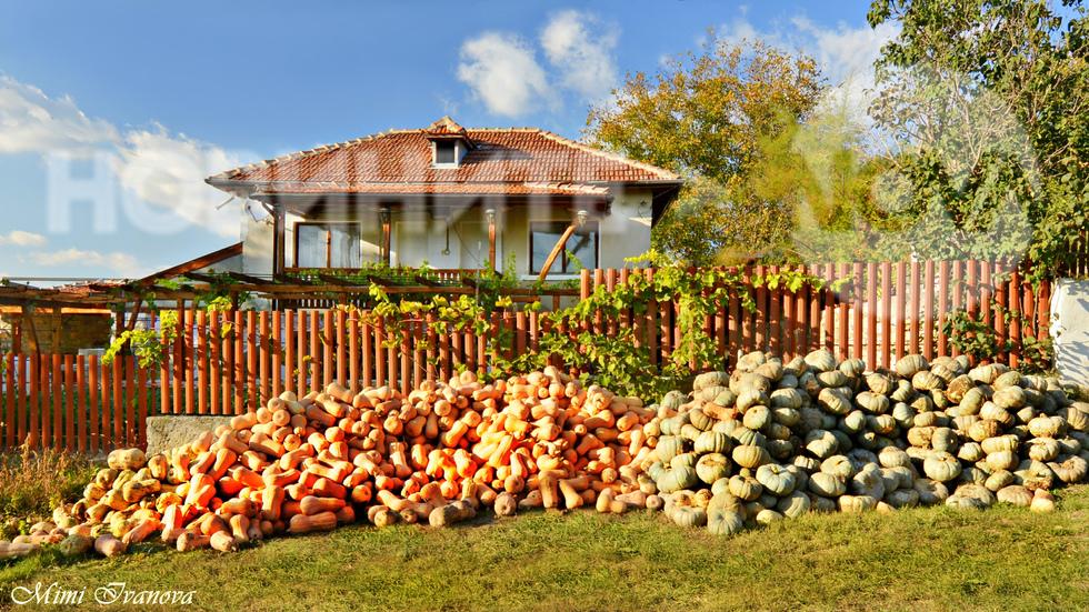Идилия и колорит от красивото добруджанско село Ботево...