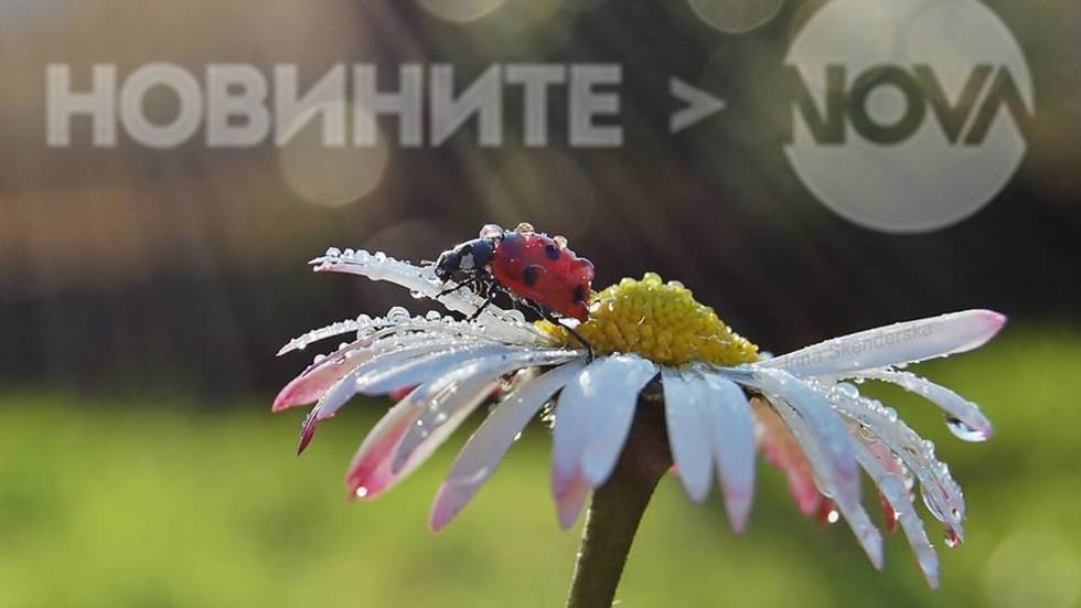 Пролетен ден