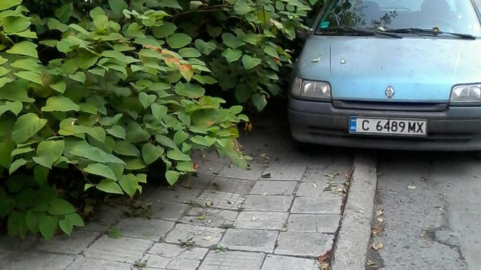 Софийски тротоари