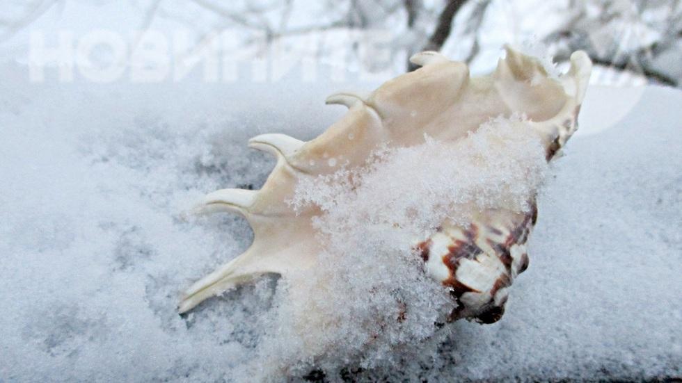 Снежни етюди с морски привкус