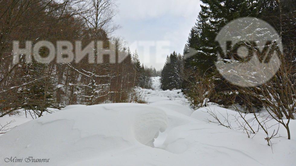 Витоша, потънала в сняг и тишина