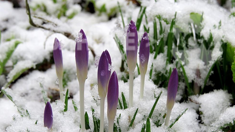 Красивата страна на зимата