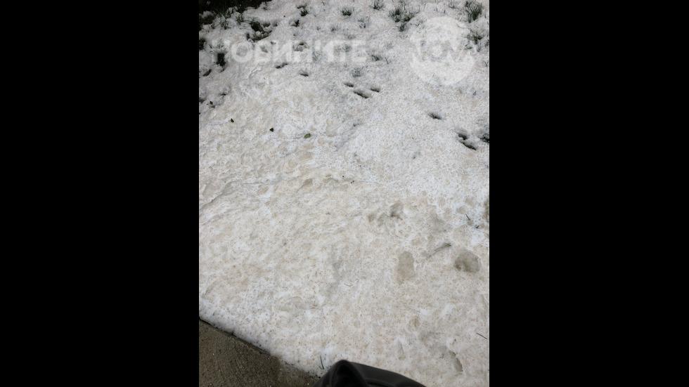 Червен сняг