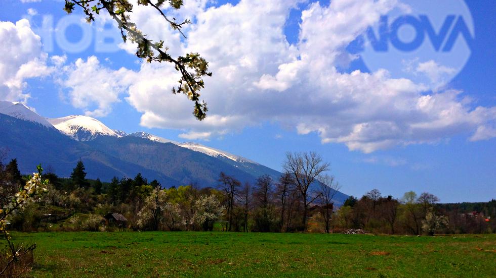 Свежа пролет под снежните била на Пирин
