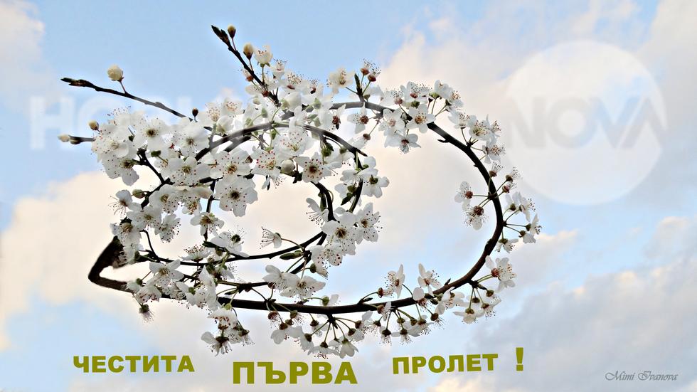Носена от вятъра, при нас долетя пролетта...