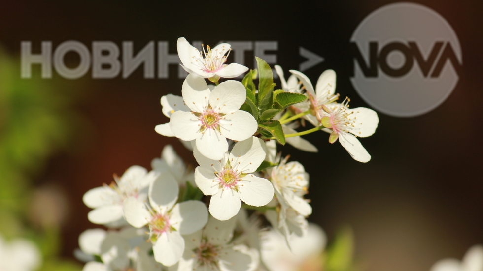 Пролет