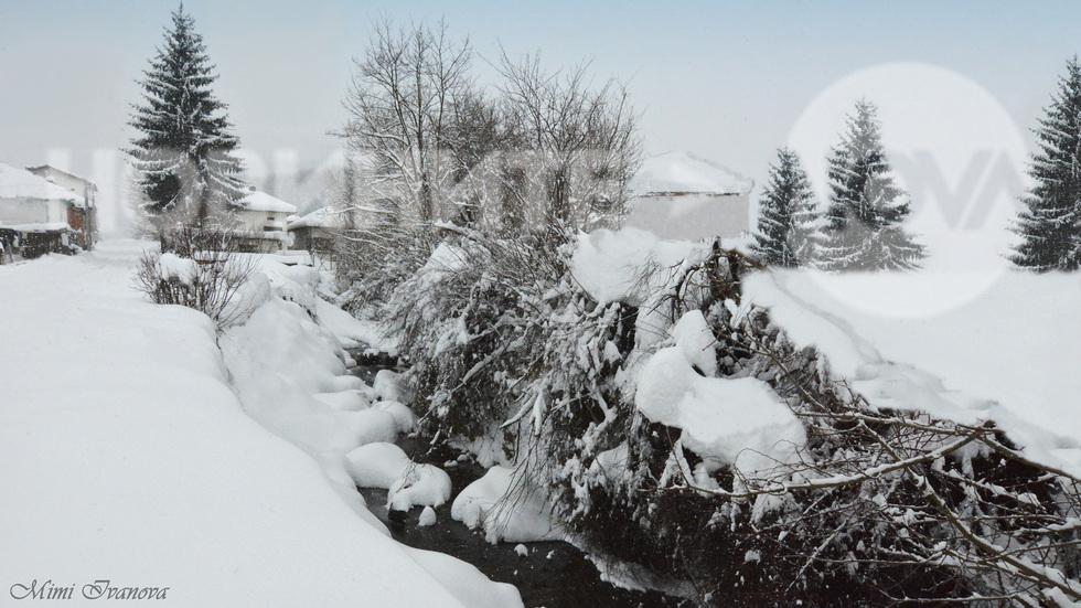 Бяла зима без край и предел