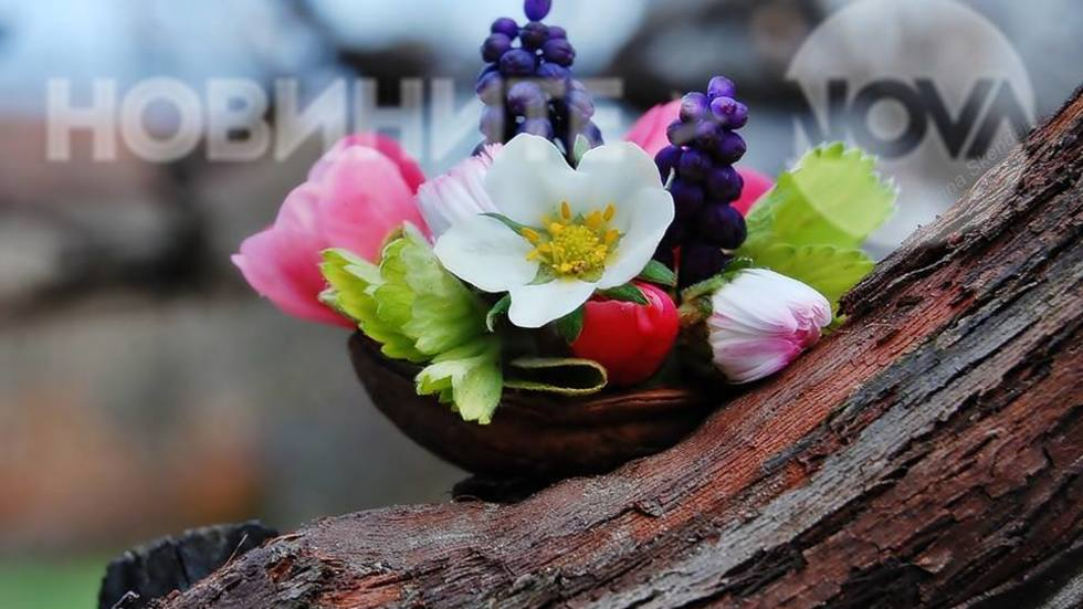 ''Пролетта събрах в черупка''