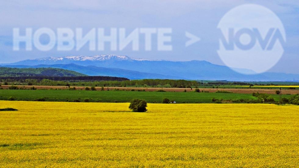 Софийско поле