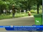 Деца ще разхождат кучетата си само след писмено съгласие на родител
