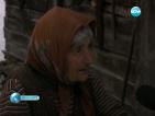 Осъдиха 90-годишна баба за отглеждане на канабис