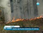 20 декара гора над Рилския манастир са в пламъци