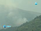 Огън бушува в борова гора над Рилския манастир