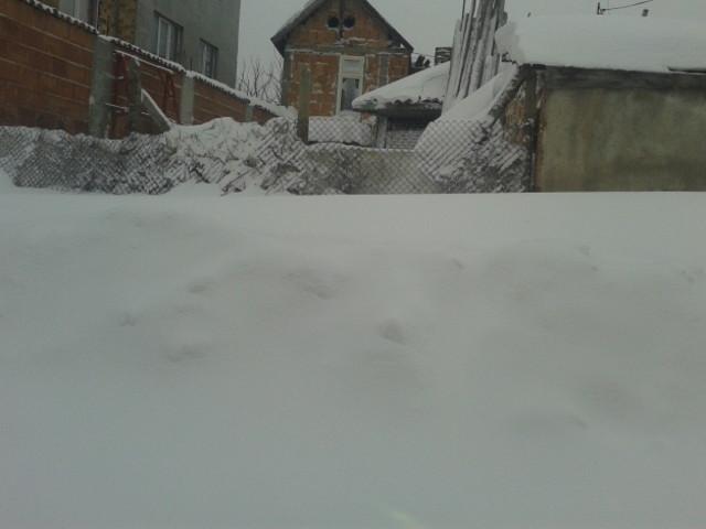 """В Силистра имаме """"малко"""" сняг! 2"""