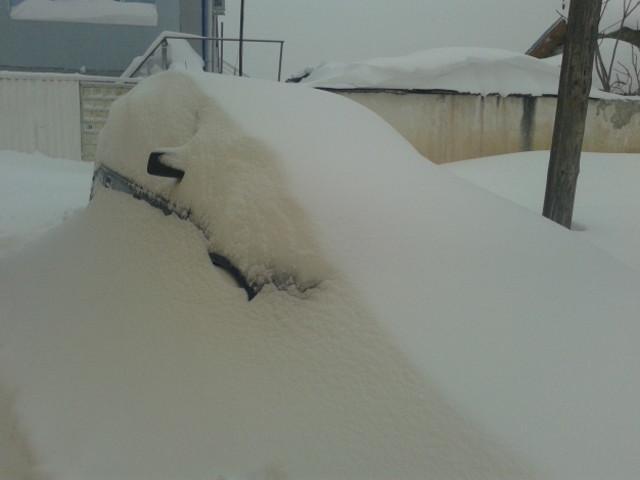 """В Силистра имаме """"малко"""" сняг! 4"""