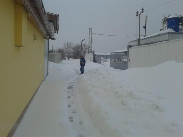 """В Силистра имаме """"малко"""" сняг! 6"""