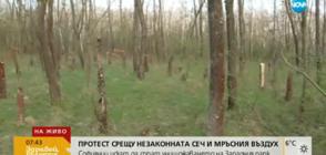 Граждани на протест срещу незаконна сеч в Западния парк в София
