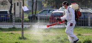 Започнаха да пръскат срещу кърлежи и комари в София