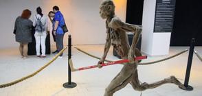 ЗА ПРЪВ ПЪТ У НАС: Изложба с истински човешки тела (ВИДЕО+СНИМКИ)
