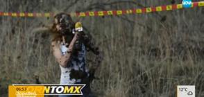 Репортерка стана цялата в кал след интервю с моторист (ВИДЕО)