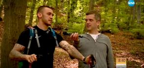"""Тартор на агитката на """"Левски"""": Бомбичката едва ли е хвърлена умишлено по полицайката"""
