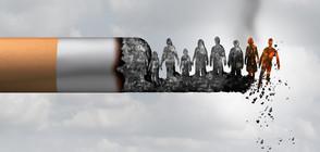 СЗО настоя за ограничаване на рекламата на тютюневи изделия