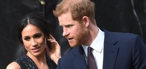 """НА ЖИВО: Принц Хари и Меган Маркъл си казват заветното """"Да"""" (ВИДЕО+СНИМКИ)"""