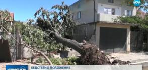 БЕДСТВЕНО ПОЛОЖЕНИЕ: Над 200 сгради са пострадали в Бяла Слатина