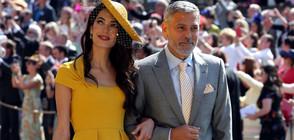 Koи бяха най-елегантните гостенки на кралската сватба? (ГАЛЕРИЯ)