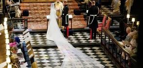 Челист тийнейджър разтопи сърцата на сватбата на Меган и Хари (ВИДЕО)