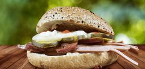 120 деца в Румъния са в болница след натравяне със сандвичи