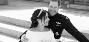 Официални сватбени снимки на Меган и Хари (ГАЛЕРИЯ)