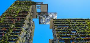 Невероятни вертикални градини от целия свят (ГАЛЕРИЯ)