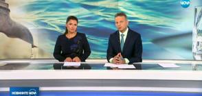 Новините на NOVA (22.05.2018 - централна)