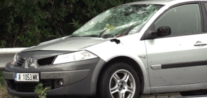 Дърво падна върху кола в Бургас, вътре е имало дете (ВИДЕО+СНИМКИ)