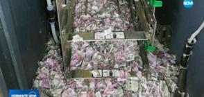 Мишки изгризаха хиляди долари от банкомат (ВИДЕО)