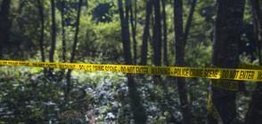 Откриха два трупа в гора край Кубрат