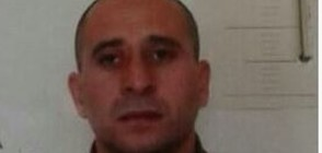 Затворник избяга от мандра край Ловеч (ВИДЕО+СНИМКИ)
