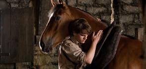 """Легенда за приятелството и надеждата в """"Боен кон"""" по NOVA"""