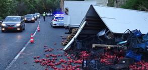 Камион с домати се разби в скала, има ранени (СНИМКИ)