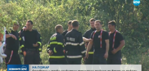 Огнеборци и горски служители тренираха реакция по време на пожари
