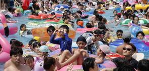 Рекордните жеги убиха десетки в Япония