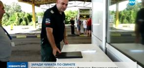 ЗАРАДИ ЧУМАТА ПО СВИНЕТЕ: Строги мерки на границата с Румъния