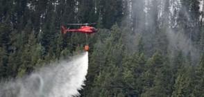 Пожари в Латвия унищожиха над 1000 хектара гори и храсти