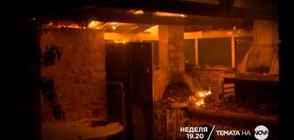 В Темата на NOVA на 29 юли очаквайте: Огнен ад в Гърция