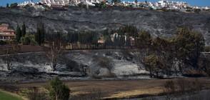 Испания се бори с голям горски пожар (ВИДЕО+СНИМКИ)