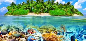 КРАСОТА: Местата с най-синята вода в света (ГАЛЕРИЯ)